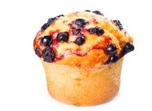 Muffin met bosbes stock foto's