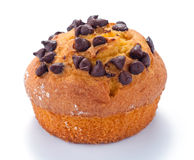 Muffin met chocoladeschilfers Royalty-vrije Stock Foto