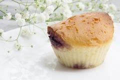 Muffin met jam Royalty-vrije Stock Foto