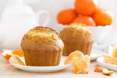 Muffin met mandarijnenclose-up op witte achtergrond Zoet heerlijk eigengemaakt baksel Witte achtergrond royalty-vrije stock foto's