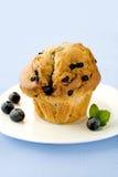 Muffin mit Beeren Lizenzfreie Stockfotografie