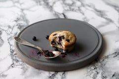 Muffin mit Blaubeeren Lizenzfreie Stockfotografie