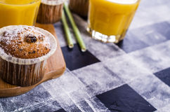 Muffin mit Rosinen stockbild