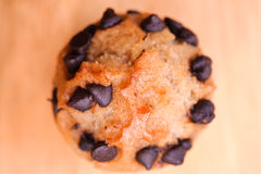 Muffin Muffin 5 Royalty Free Stock Photography