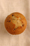 Muffin on Napkin. A muffin on a napkin, more of a casual country feel royalty free stock image