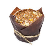 Muffin with nuts Royalty Free Stock Photos
