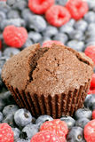 Muffin op wit Stock Foto