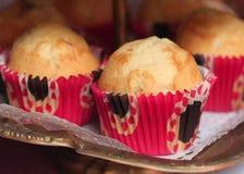 Muffin på maträtt Royaltyfri Fotografi