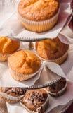 Muffin på ställningen Royaltyfri Fotografi