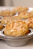 Muffin pan full of tropical muffins Royalty Free Stock Photography