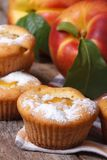 Muffin with peach and powdered sugar vertical Stock Photos