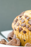 Muffin on a Plate Stock Photography