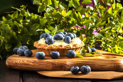 Muffin with pudding and blueberries. Stock Photo