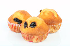 Muffin Raisin Royalty Free Stock Photos