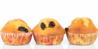 Muffin raisin Royalty Free Stock Photo