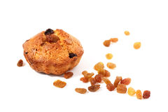 Muffin with raisin Stock Photography