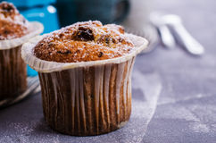 Muffin with raisins Royalty Free Stock Photo