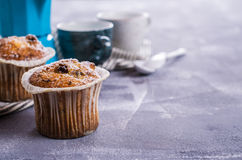 Muffin with raisins Stock Photo