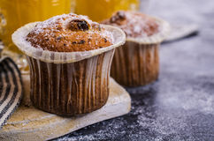 Muffin with raisins Royalty Free Stock Images