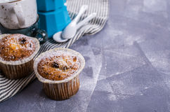 Muffin with raisins Royalty Free Stock Photos