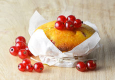Muffin with red currants Stock Photos
