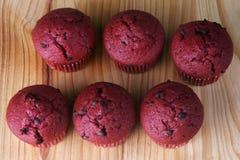 Muffin rossi del velluto Fotografia Stock