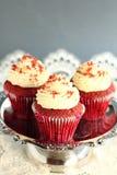 Muffin-Rot-Samt. Stockbild