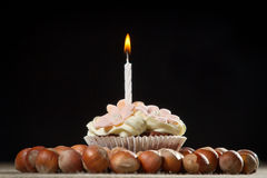 Muffin with small burning candle. And huzelnuts Royalty Free Stock Photos