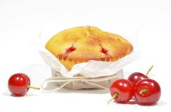 Muffin with sour cherries Stock Images