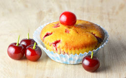 Muffin with sour cherries Stock Image
