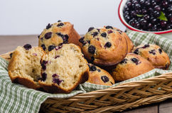 Muffin split open to show berries Royalty Free Stock Images