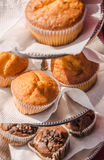 Muffin sul supporto Fotografia Stock Libera da Diritti