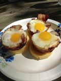 Muffin Tin Eggs Royaltyfria Foton