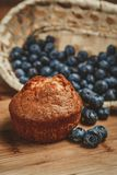 Muffin und Blaubeere Lizenzfreie Stockfotos