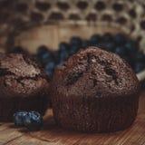 Muffin und Blaubeere Stockbild
