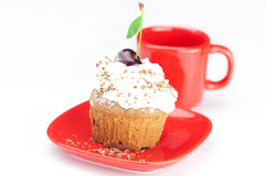 Muffin with whipped cream and cherry Royalty Free Stock Image