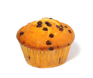 Muffin on white background Stock Photos