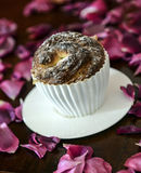 Muffin. In white cup on a background of petals Stock Image