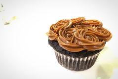 Muffinefterrätt Royaltyfri Bild