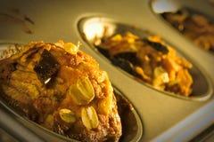 Muffiner Arkivfoto