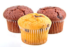 Muffiner med chokladchiper Royaltyfri Foto