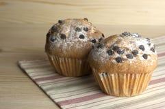 Muffiner med chokladdroppar Arkivbilder