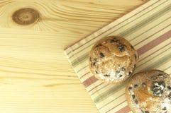 Muffiner med chokladdroppar Arkivbild