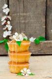 Muffiner med fyllning royaltyfri fotografi
