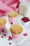 Muffiner med nya cranberries Royaltyfri Fotografi