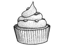 Muffinillustration, teckning, gravyr, färgpulver, linje konst, vektor Royaltyfri Illustrationer