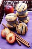 muffinplommoner Fotografering för Bildbyråer