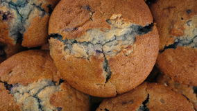 Muffins βακκινίων περιστροφή φιλμ μικρού μήκους