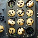 Muffins βακκινίων σε ένα τηγάνι στοκ φωτογραφίες με δικαίωμα ελεύθερης χρήσης