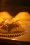 Muffins βανίλιας ψησίματος στον καυτό φούρνο Στοκ Φωτογραφίες